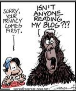 Bigfoot blog 1