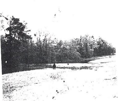 Fouke Monster Photo