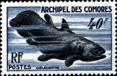 Coelacanth