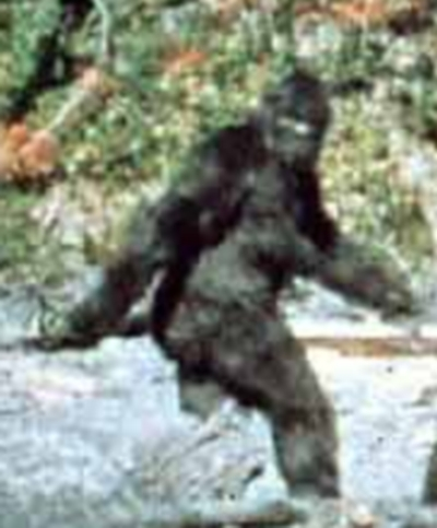 http://www.cryptomundo.com/wp-content/patterson_bigfoot.jpg