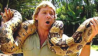 Steve Irwin