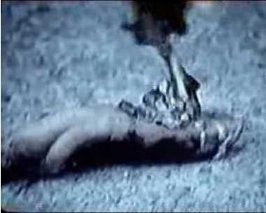 Biscardi Bigfoot Leg