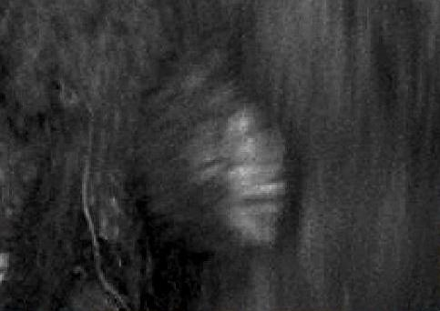 Vermont Trail Cam Bigfoot