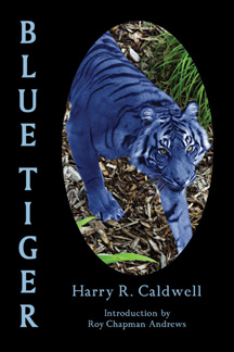 bluetiger