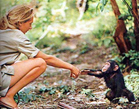 jane goodall live africa exotic places