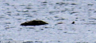 Loch Ness Monster Photo